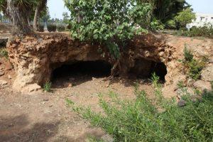 Mikveh Yisrael